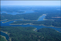 Aerial view of Norfork Lake