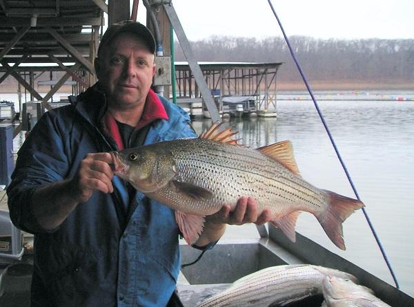 Man with fish at boat dock