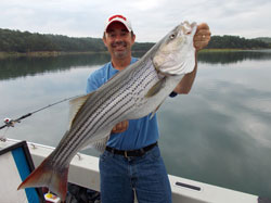 Fisherman with big striped bass